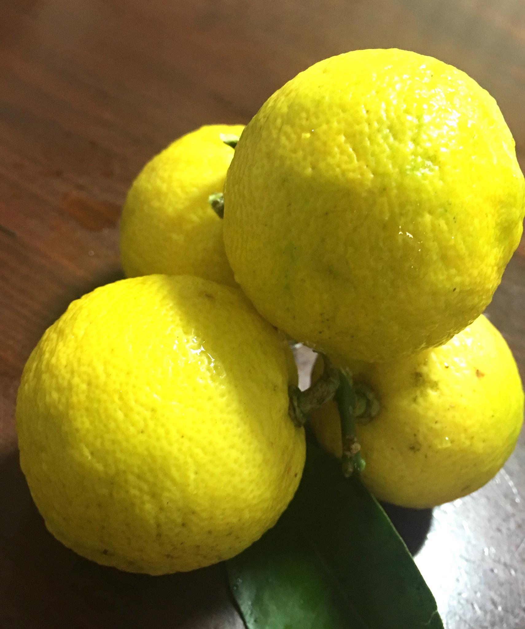柚子はちみつを作りました