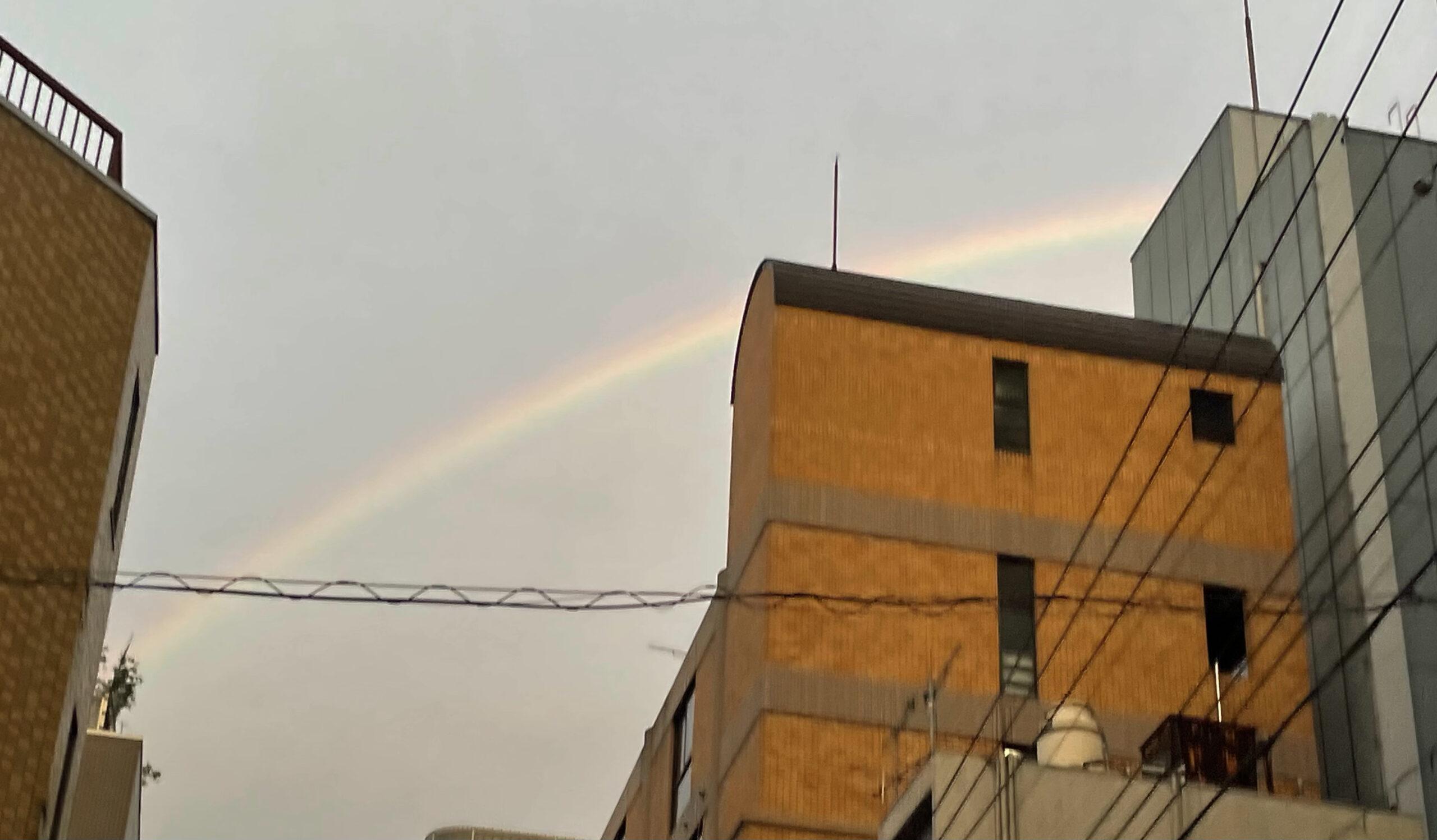 雨あがりに虹